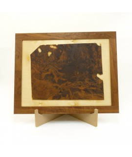 Black Walnut Burl in Walnut Frame