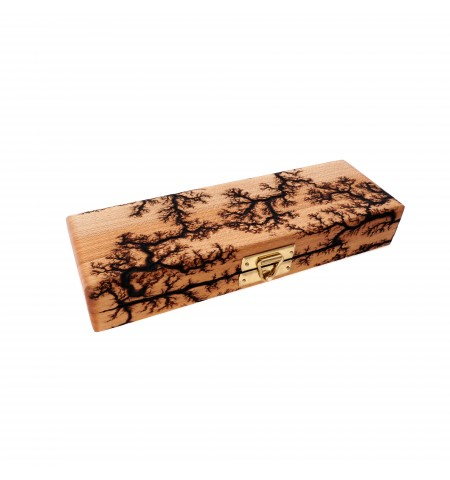 Double-Pen Wooden Pen Case in Maple with Lichtenberg Burn Pattern